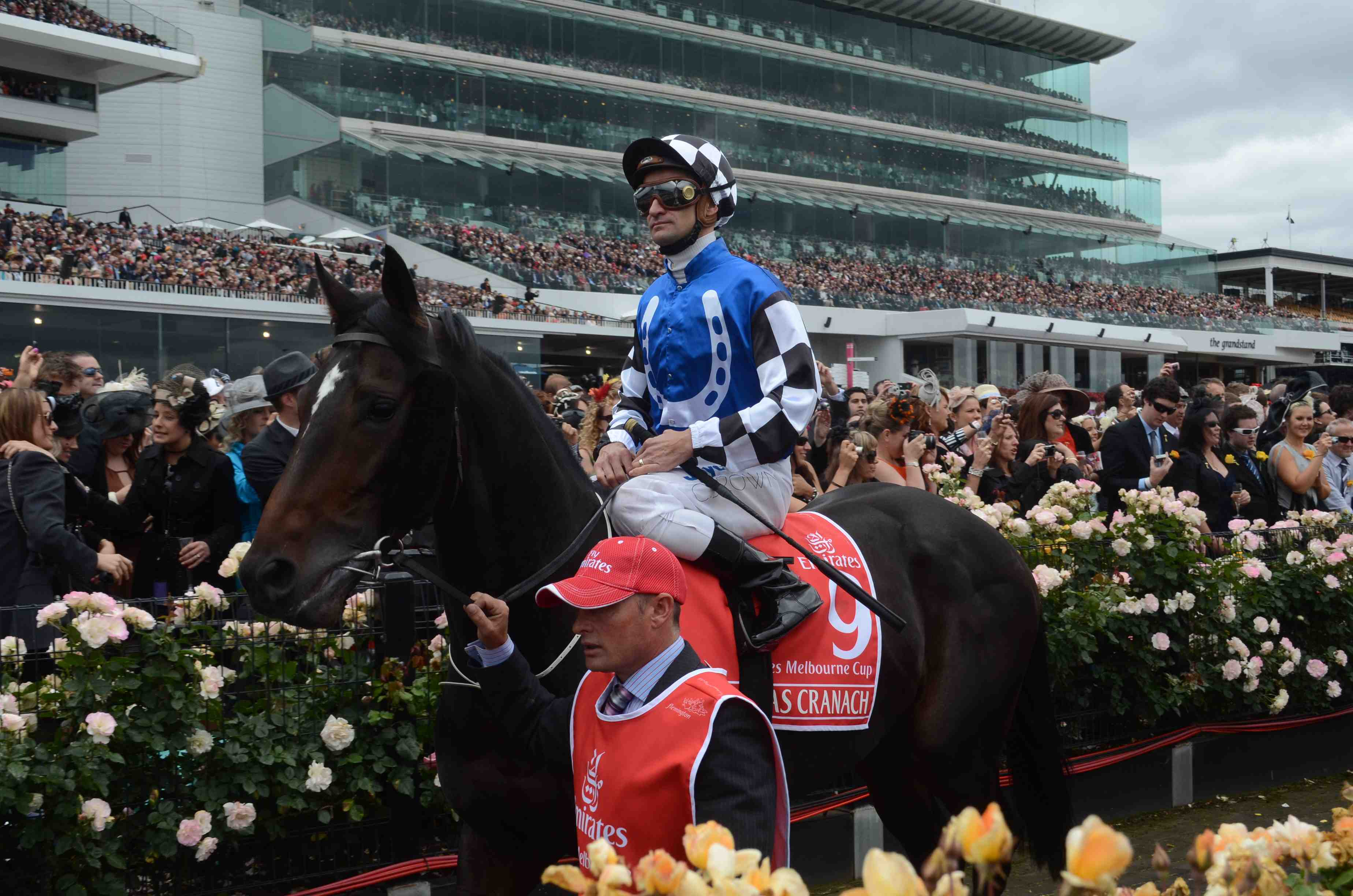Lucas Cranach at the 2011 Emirates Melbourne Cup