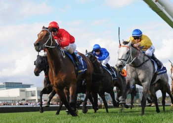 Gold Symphony trained by PEter Moody wins at Caufield to secure his second G3 victory.
