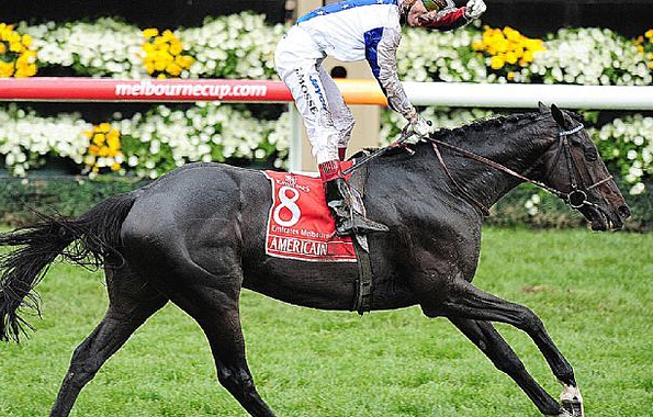 Americain (Dynaformer) wins the 2010 Emirates Melbourne Cup