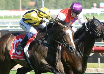 Puritan wins at Caulfield