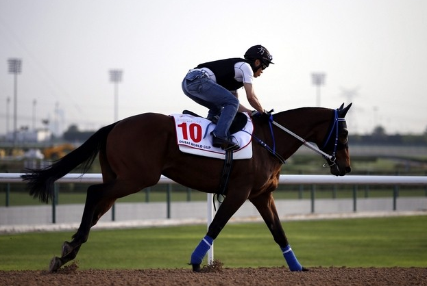 Gun Pit in work at Dubai for the World Cup (PIC: EPA/ALI HAIDER)