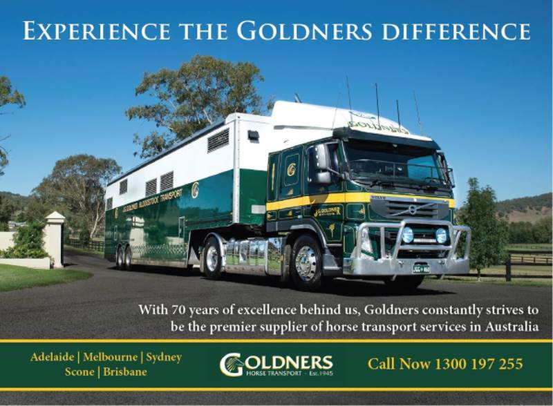 Goldners ad