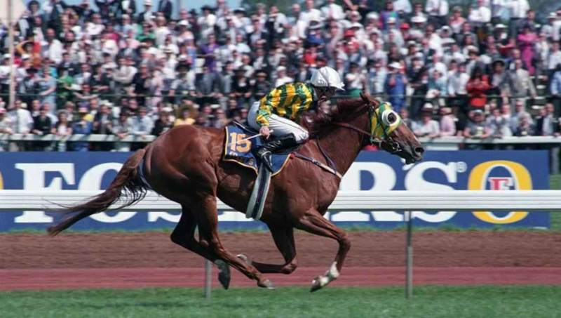 Let's Elope wins the 1991 Melbourne Cup