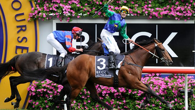 Caulfield Guineas winner All Too Hard was bred by Gilgai Farm & sold at the 2011 Easter Sale