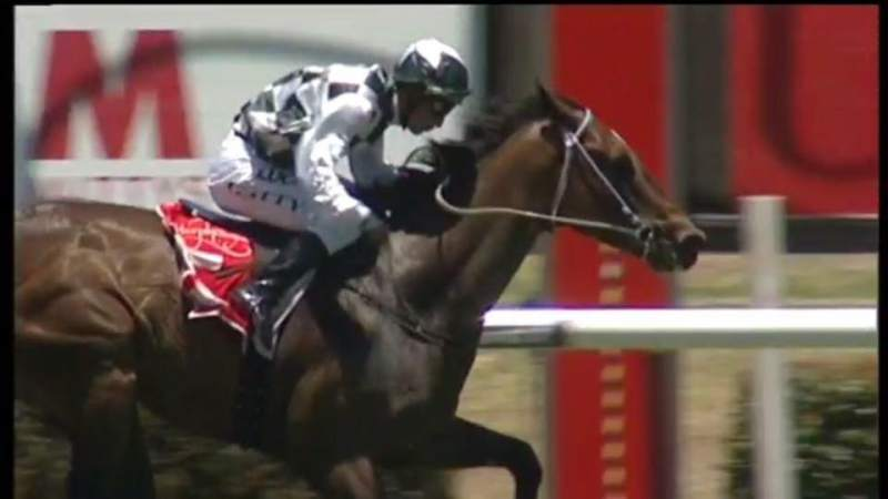 Viking's Reward wins at Morphettville