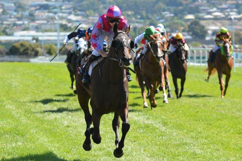 Northwest Passage wins the Hobart Guineas (pic-TasRacing)