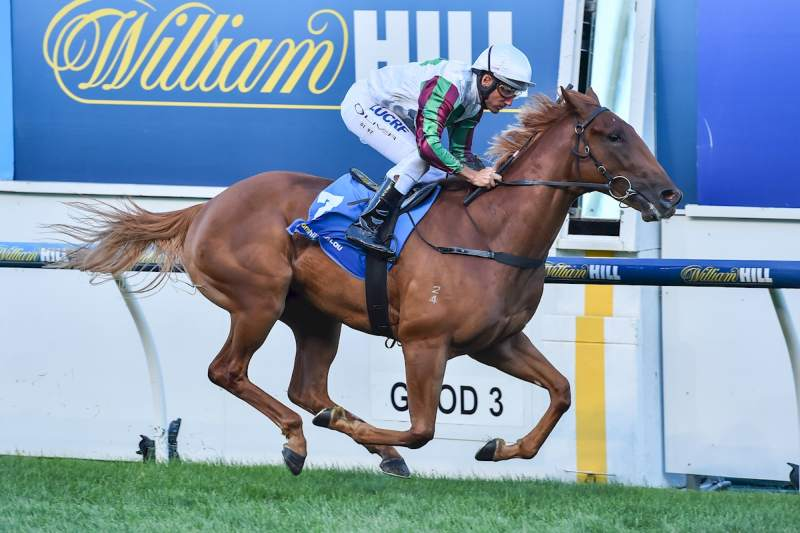 Reward for Effort filly Blondie lines up in the Group 1 Blue Diamond (John Donegan-Racing Photos)