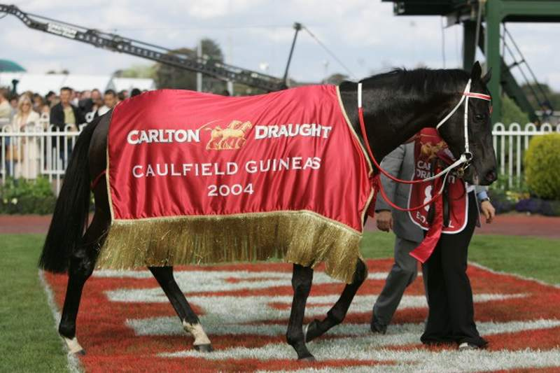Econsul as a Caulfield Guineas winner