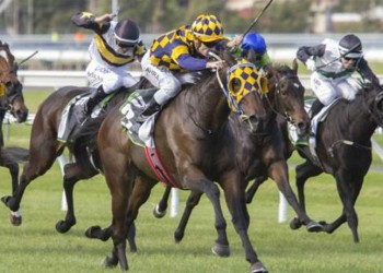 Mark Zahra rides Ana Royale to victory in the Group 3 SA Fillies Classic (pic-Atkins Photography)